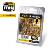OAK - DRY LEAVES