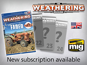 Subscription TWM Issues 21-24