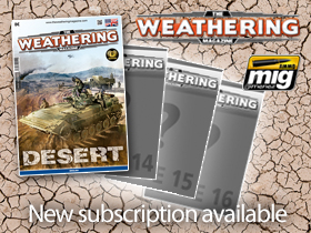 Subscription TWM Issues 13-16