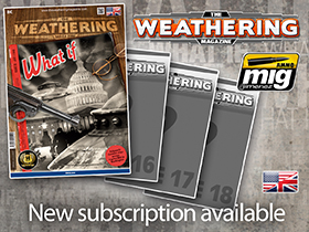 Subscription TWM Issues 15-18