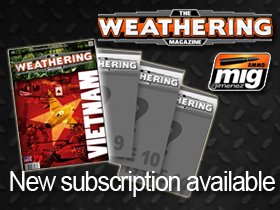 Subscription for Issue 8-through- Issue 11 The Weathering Magazine