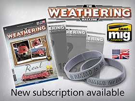 Subscription TWM Issues 18-21 AMMO for Life