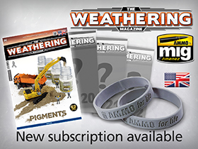 Subscription TWM Issues 19-22