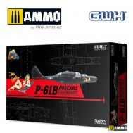 1/48 P-61B Noseart /w Full Underwing Store & Special Metal weight