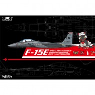 1/48 F-15E Special Paint Schemes of Expeditionary Eagles