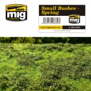 SMALL BUSHES – SPRING