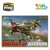 Cute  U.S P-40 Warhawk Fighter