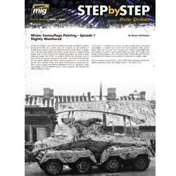 Download Step by Step - Winter Camouflage Painting